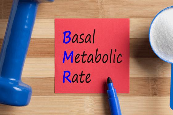 Bazálny metabolizmus